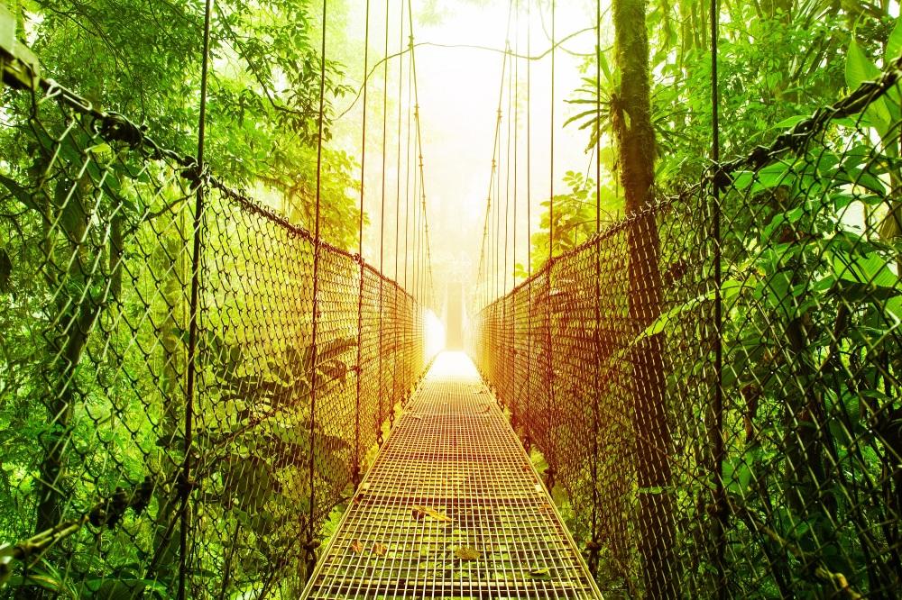 Monteverde 2