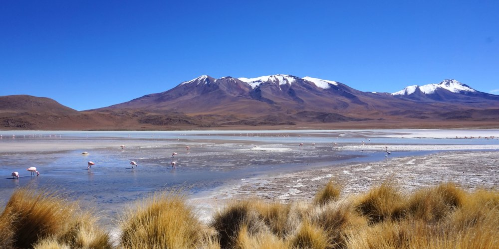 Bolivie Desert d Uyuni.JPG